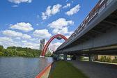 Moskova, pitoresk köprüsü — Stok fotoğraf