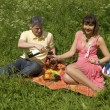 Picnic on grass — Stock Photo
