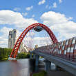 Moscow, Picturesque bridge - Stock Photo