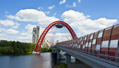 Moscow, Picturesque bridge — Foto Stock