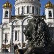 Stock Photo: Moscow, cathedral of Jesus Christ Saviour and lion