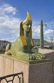 圣彼得斯堡,狮身人面像的雕塑 — 图库照片