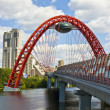 Stock Photo: Moscow, Picturesque bridge