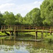 Wooden bridge in park — Foto Stock