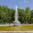 Fountains in Peterhof, Russia — Stock Photo