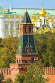 Moscow, Kremlin tower and Annunciation cathedral — 图库照片