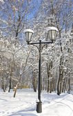 Winter park and street lamp — Stock Photo