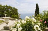 Rose garden on sea coast — Stock Photo