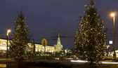 Chirstmas trees, Moscow — Stock Photo