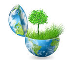 Environmental Concept. Globe and a green tree in the hands against the backdrop of a ripple — Stock Photo