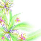 Nejlepší romantické květinové pozadí — Stock fotografie