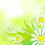 abstrakt Frühlings-Konzept — Stockfoto