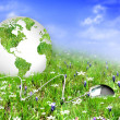 Globe on the green grass — Stock Photo