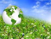 Globus auf dem grünen rasen — Stockfoto