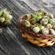 Unripe hazelnuts — Stock Photo #29507275