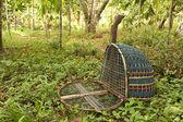 Handmade bird trap — Stock Photo