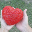 Hands Holding Red Plastic Heart — Stock Photo