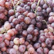 Red Grapes — Foto Stock
