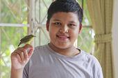 Boy and bird — ストック写真