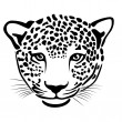 Leopard — Stock Vector