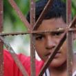 Boy Behind Iron Lattice — Stock Photo #40940241