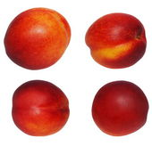 Set nectarine fruit isolated on white background, with clipping path — Stock Photo
