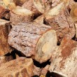 Stump stack background, firewood — Stock Photo