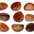 Set chestnut isolated on white background, Sweet Edible Chestnuts, ( with clipping path ) — Stock Photo #35561357