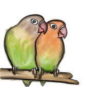 Hand drawn Lovebirds isolated on white Agapornis fischeri (Fischer's Lovebird) — Stock Photo