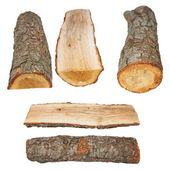 Set log fire wood isolated on white background with clipping path — Foto de Stock