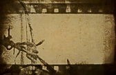 Concept old grunge film strip and barbed wire background — Stock Photo