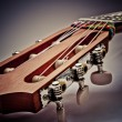 Guitar fingerboard — Stockfoto #24099103