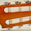 Foto de Stock  : Guitar fingerboard