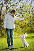 Woman with terrier — Stock Photo