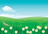 Blossom summer — Stock Vector