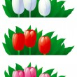 Spring tulips - Stock Vector