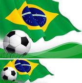 Brazilian soccer — Stock Vector