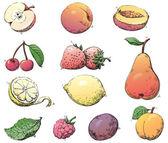 Fruits — Stock Vector
