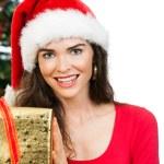 Women holding Christmas gift — Stock Photo #34203121