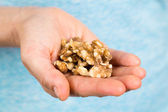 Hand holding walnuts — Stock Photo