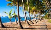 Sun rise at tropical beach — Stock Photo