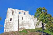 Castle in Kazimierz Dolny, Poland — Stock Photo
