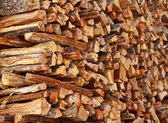 Dry firewood — Stock Photo