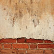 Brick wall — Stock Photo #21854807