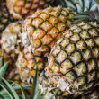 Stock Photo: Pineapples