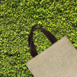 Stock Photo: Shopping bag on green leaves