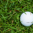 Golf ball on the green grass — Foto de stock #28965343