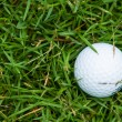 golf ball op het groene gras — Stockfoto
