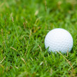 Stockfoto: Golf ball on the green grass