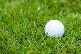 Pallina da golf sull'erba verde — Foto Stock